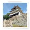 香川県の城